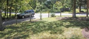 open yard