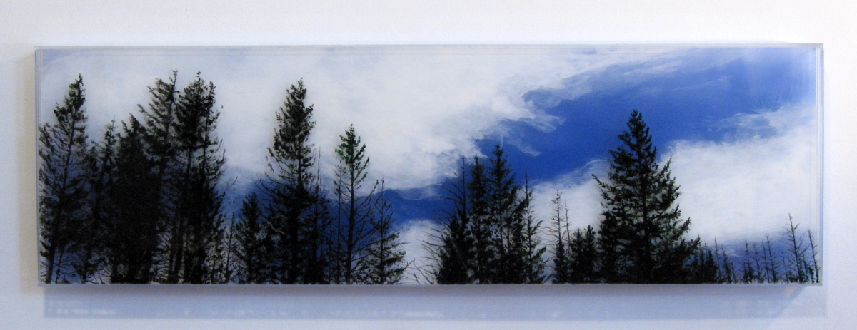 jesshurleyscott treeline oregon