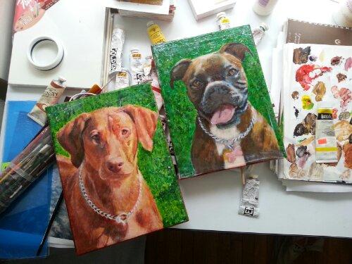 pet portraits wellscituated