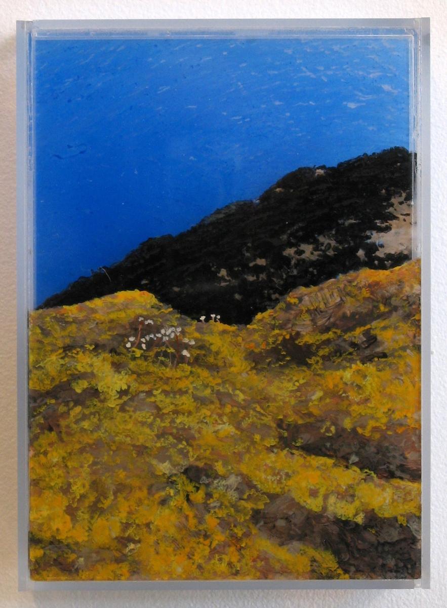 """""""Lichen, Ireland"""" © Jess Hurley Scott landscape painting"""