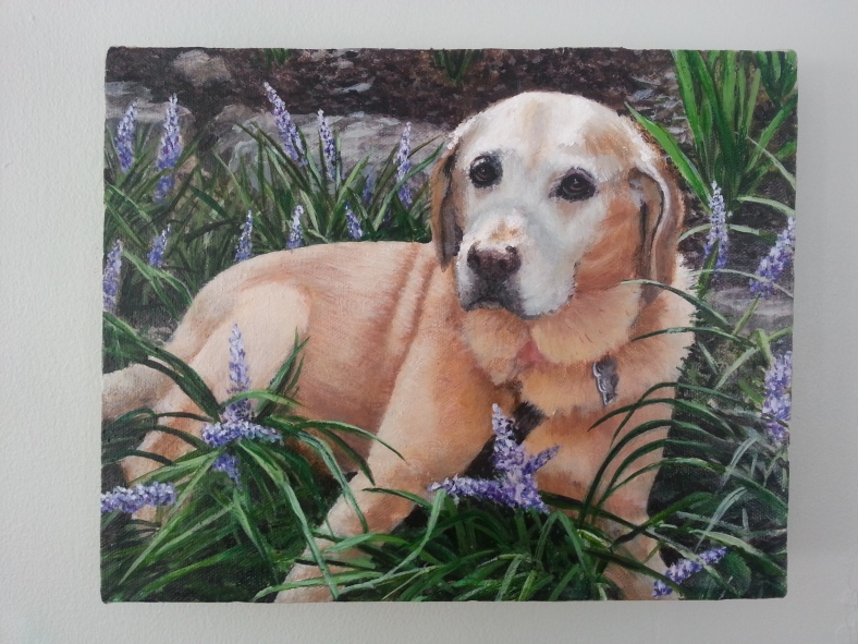 jess hurley scott pet portrait