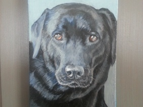 Sweetie, pet portrait by painter Jess Hurley Scott
