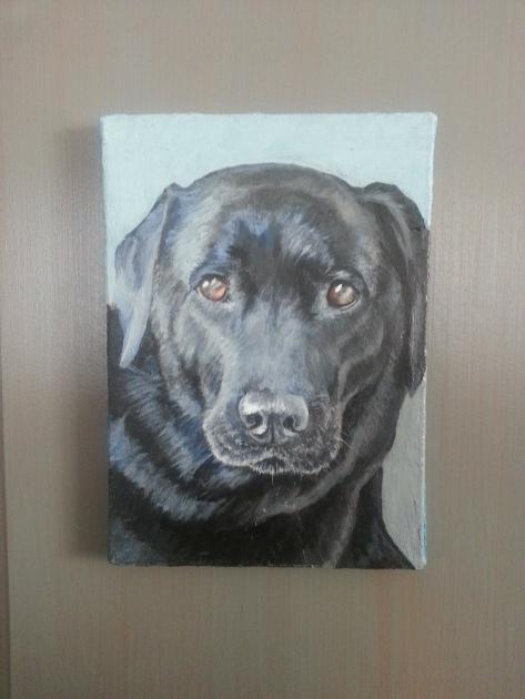 Sweetie, pet portrait by painter Jess Hurley Scott