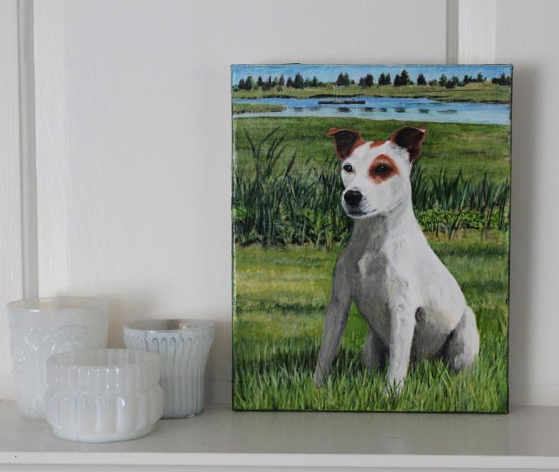 pet portrait of max by Jess Hurley Scott